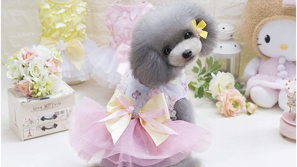 Puppy Princess Dress with Tutu, Flowers and Sequins