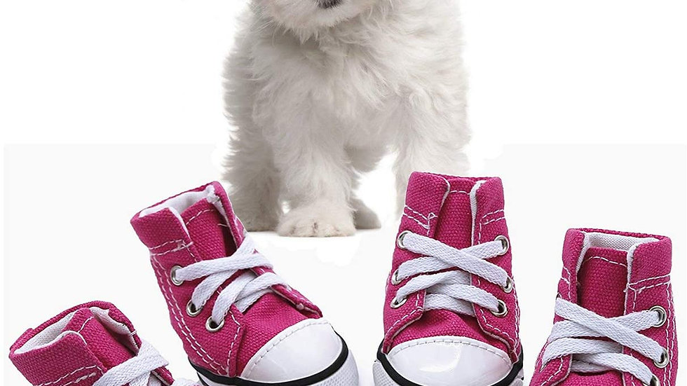 Pink Puppy Converse Canvas Sneakers
