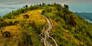 chatakpur-darjeeling.png