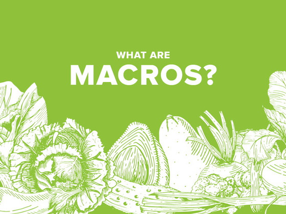 MACROS - What They Are and How to Track Them
