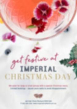 Christmas-Functions_Poster.jpg