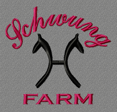 SchwungFarm.PNG