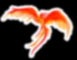 phoenix2-b.png