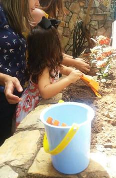 Plantando com os pais