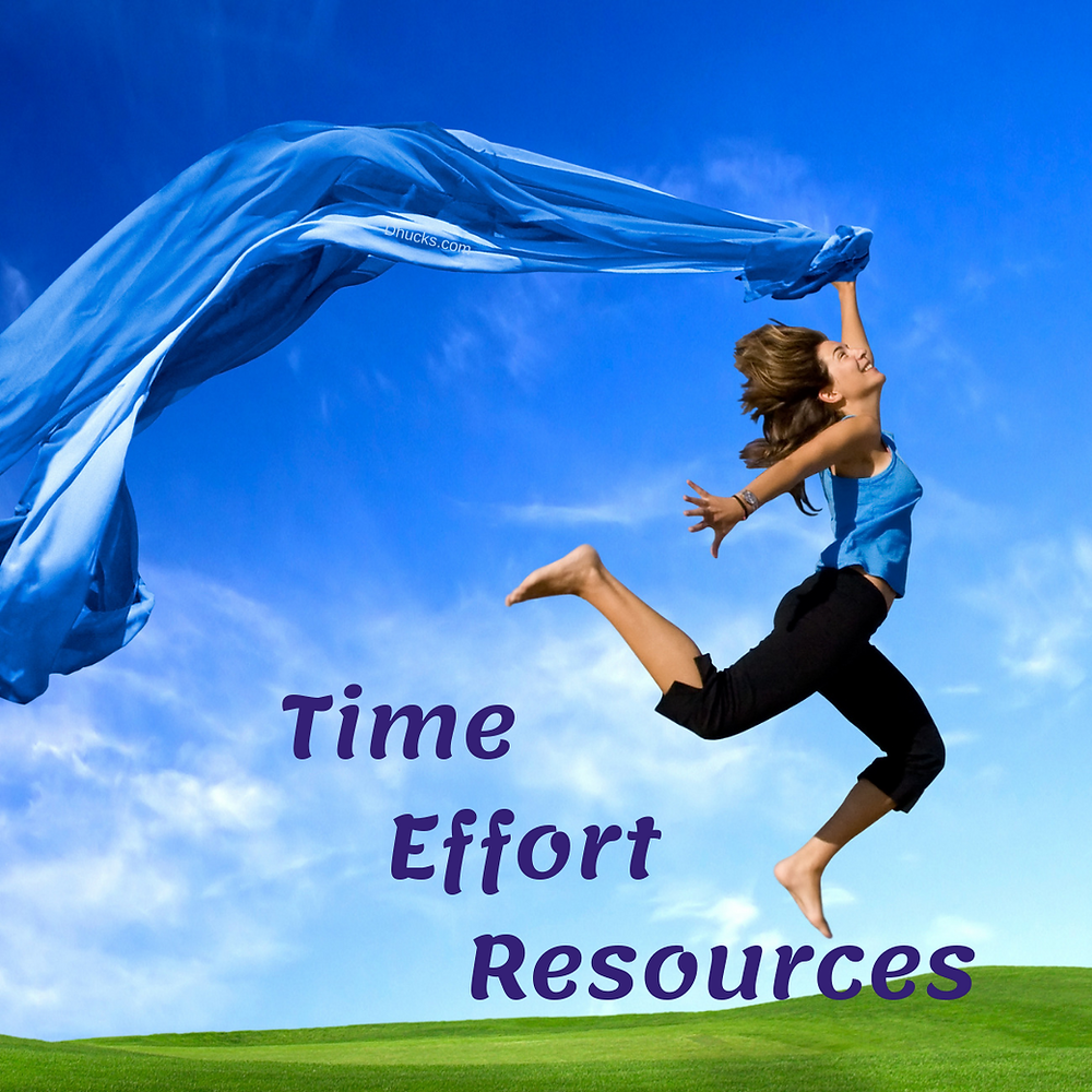 Time - Effort - Resources to make your goals happen