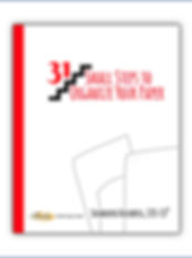 31ss paper wix book cover.png