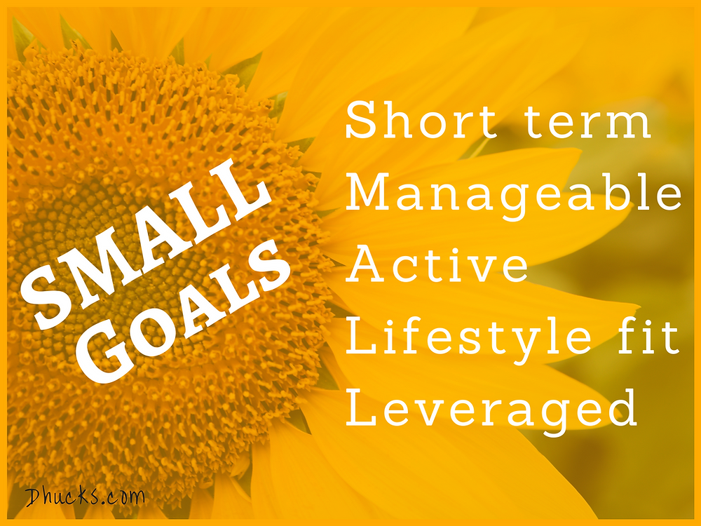 SMALL Goals: Short term; Manageable; Active; Lifestyle fit; and Leveraged - on a background of sunflower
