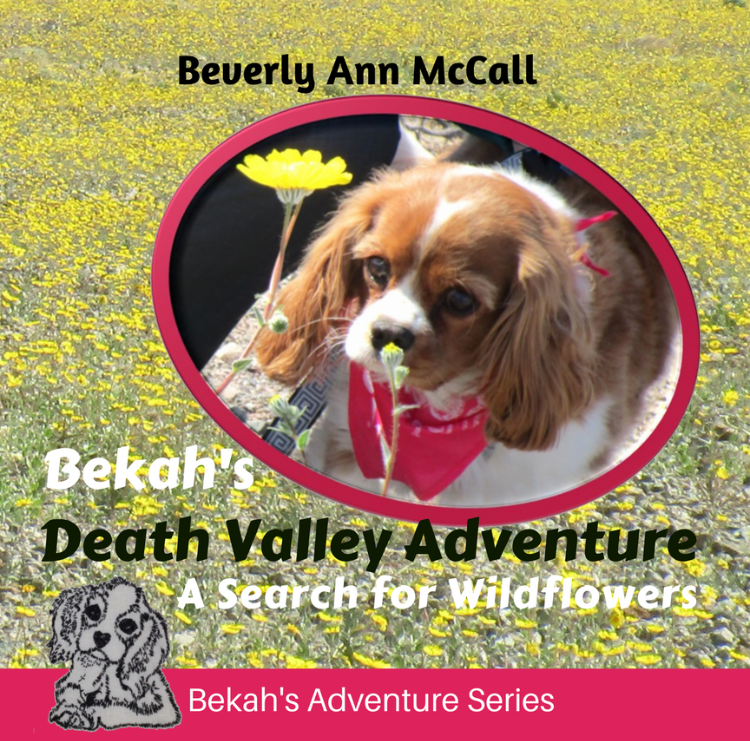 Bekeh's Death Valley Adventure by Beverly Ann McCall
