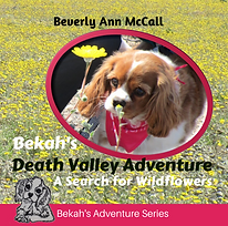Bekah's Death Valley Adventure by Beverly Ann McCall