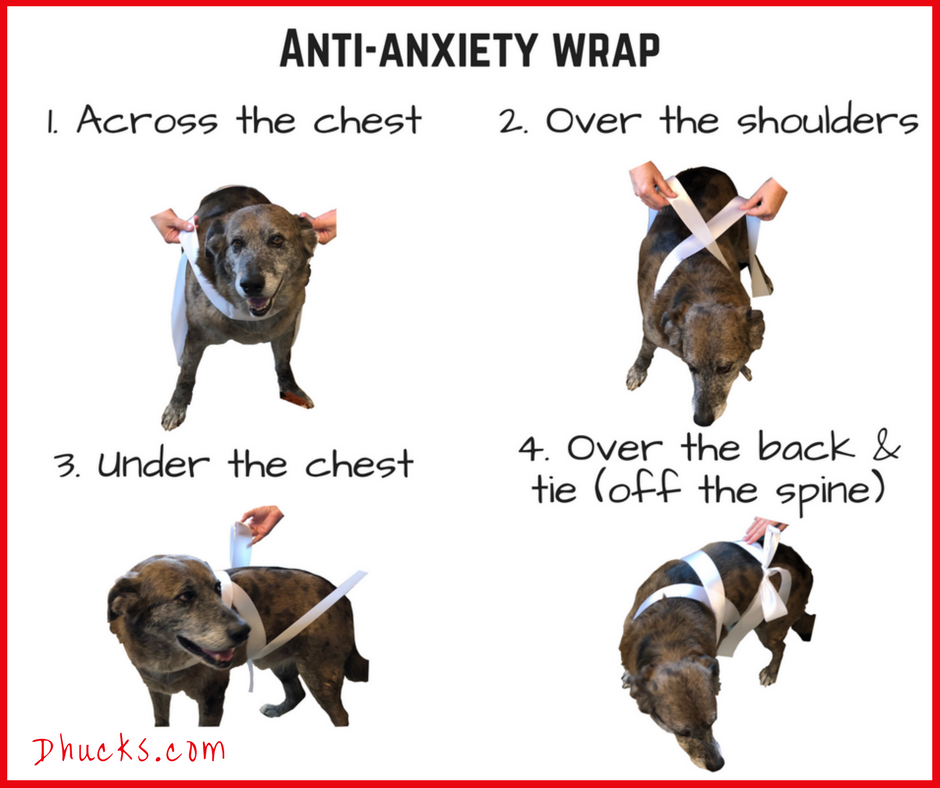 anti-anxiety wrap: 1 across the chest 2 over the shoulders 3 under the chest 4 over the back and tie