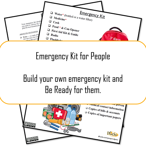 Appendix A: Emergency Kit List for People