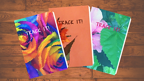 Track It 3 books.png