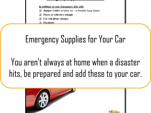 Appendix C: Car Emergency Kit