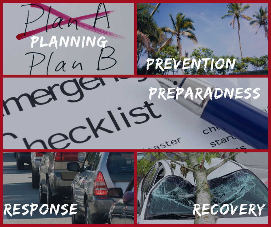 Planning, Prevention, Preparedness, Response, Recovery