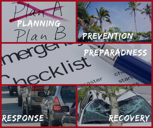 Planning, Prevention, Preparedness, Response, Recovery