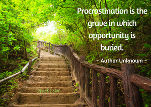 Procrastination is the grave in which opportunity is buried. author unknown