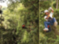 Canopy tours in the Drakensberg and Natal Midlands