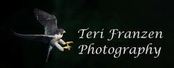 Teri Franzen Photography