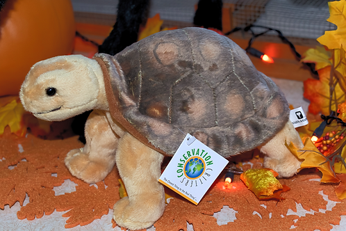 African Spurred tortoise toy