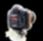 TeriFranzen_NHTLLogo3.png