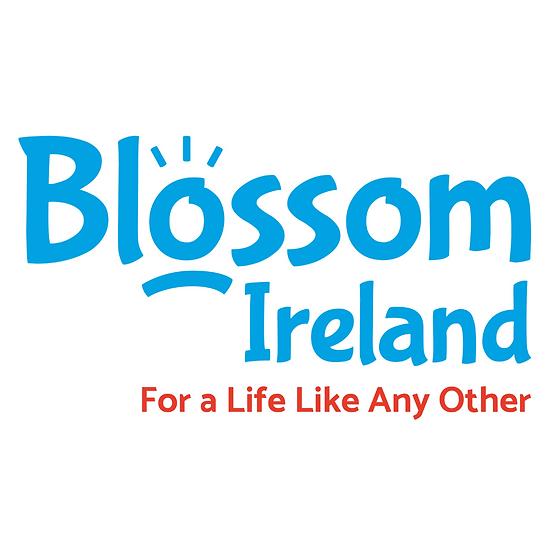 Donation to Blossom Ireland