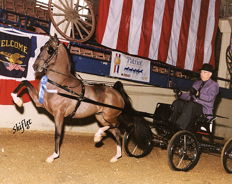 Heartland Triple Crown in 2001