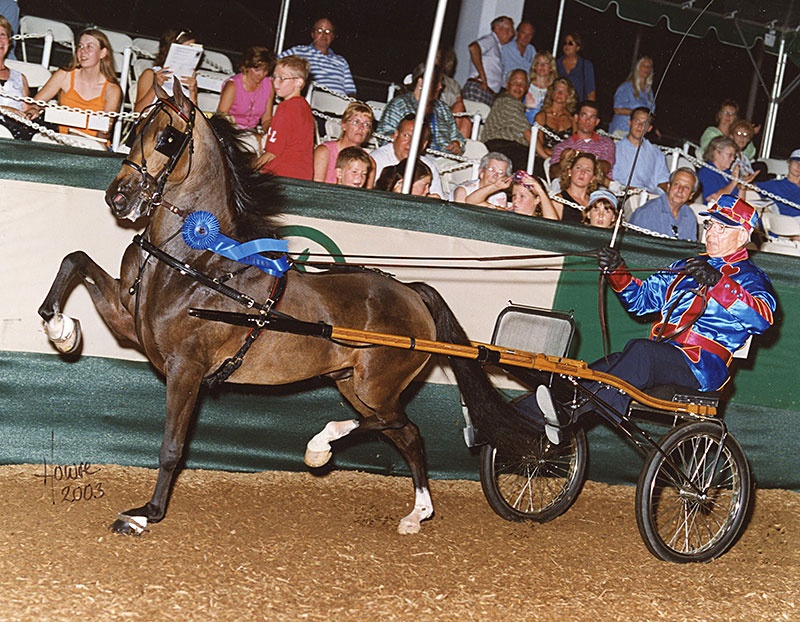 Heartland Victory Maker in 2003