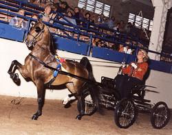 Heartland Special Special in 2002
