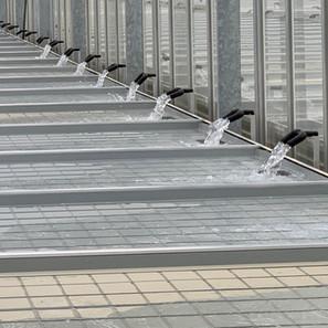 Irrigation 7.jpg