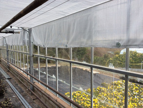COMPLETE SCREENING REPLACEMENT IN CONWY