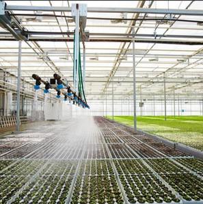 boom irrigation photo.jpg