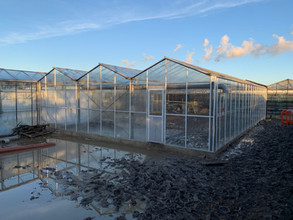 EBTECH LINK TWO GLASSHOUSES