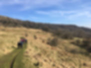 Walking in the Dales