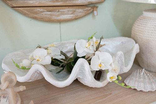 Tronchetto di orchidea bianca
