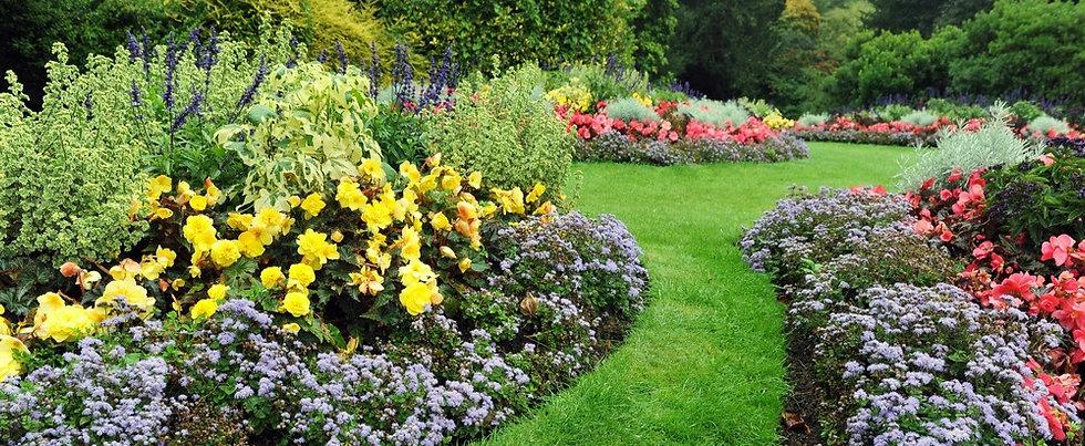 garden_1_edited.jpg
