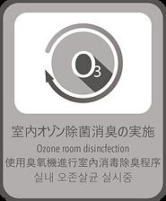 OzoneDizincfection