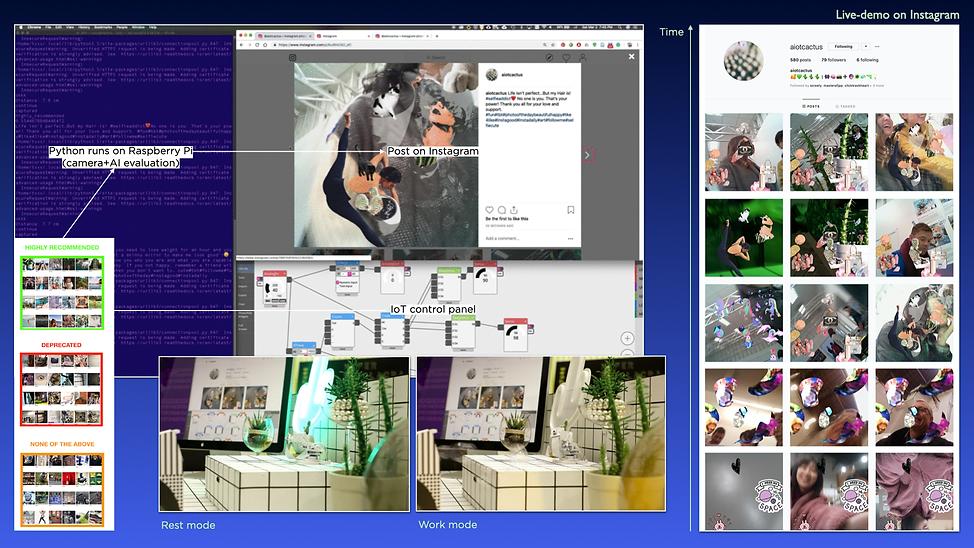 Jin, Miranda_Proj1_Slide6+.png