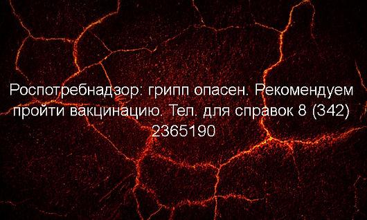 2020-12-07_153306.jpg