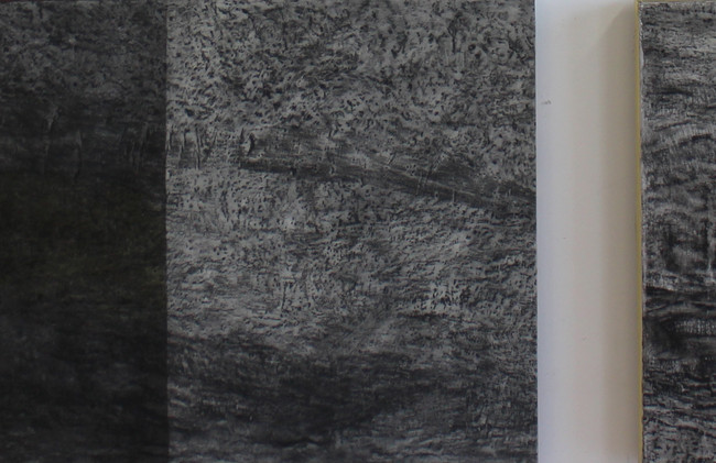 'untitled' triptych.jpg