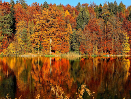 Autumn and the Internal Fire