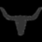 noun_Longhorn Skull_189289_333333.png