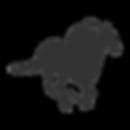 noun_horse racing_1155045_333333.png