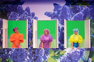 """""""Das Dreimäderlhaus"""" am Landestheater Linz Foto: Petra Moser"""