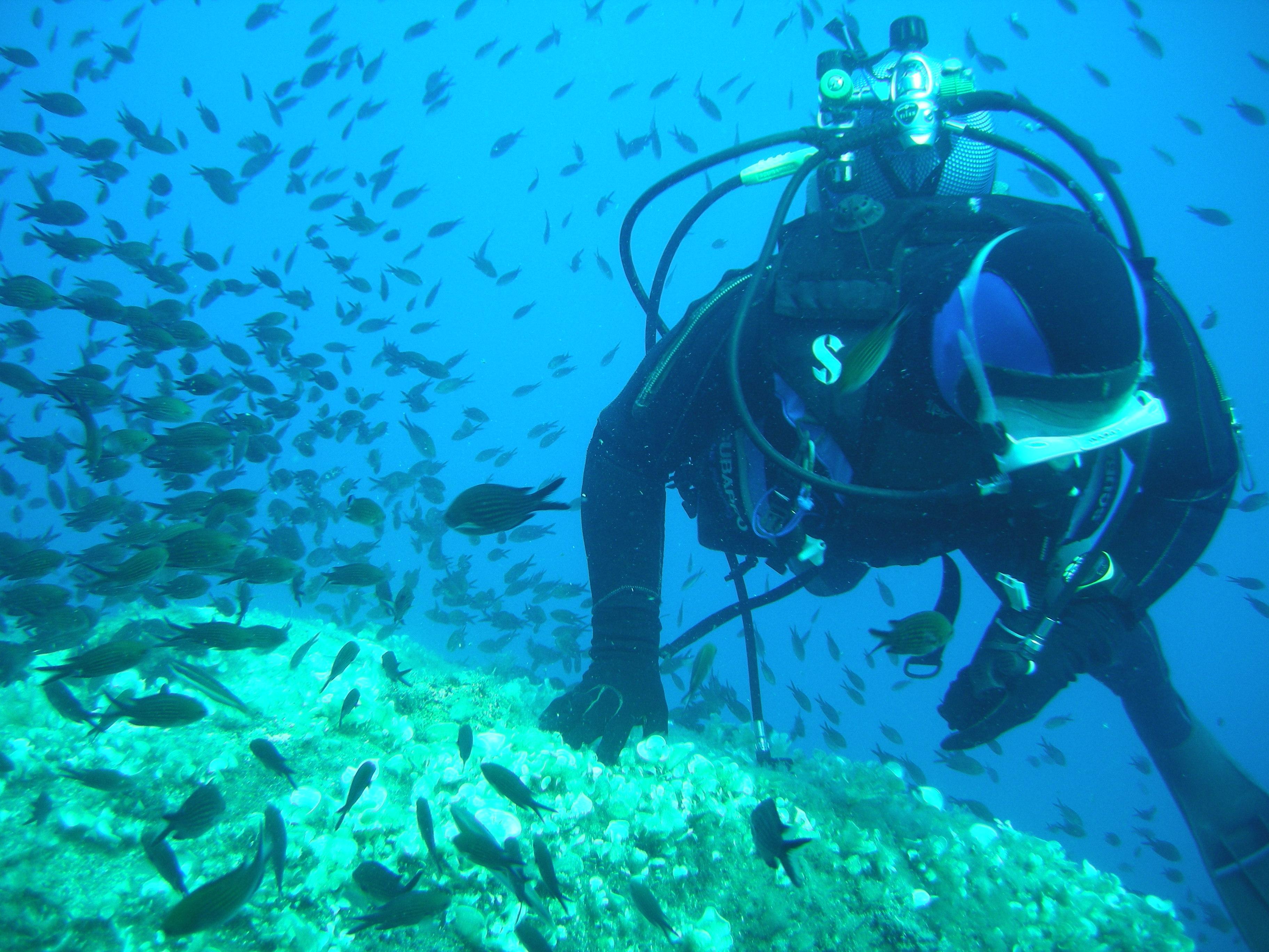 U Levante - plongée - DSCN3338[1]