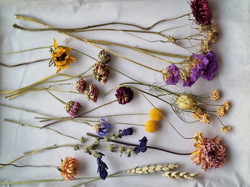 Box of Dried Flowers for Crafting