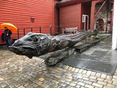 Sea Creature in Bryggen