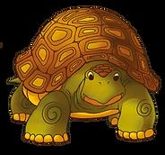 Tortoise001.png