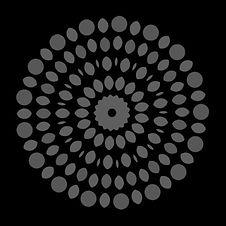 reversed image 3.jpg