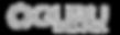 logo oguru_edited_edited.png