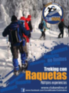 RAQUETAS ALTA _17X3COLS.jpg